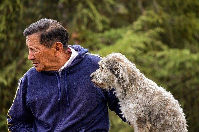 Anziani e Animali - Rompere la solitudine con l'aiuto di un amico a 4 zampe